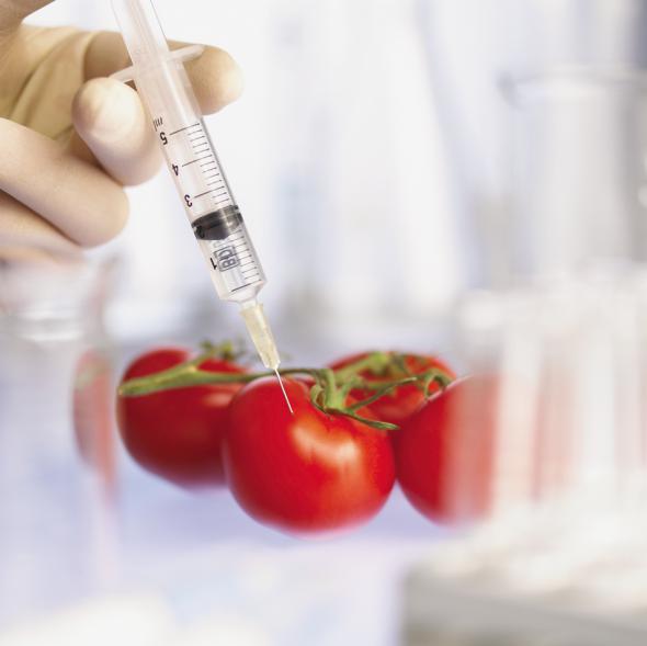 Конец света. ГМО.
